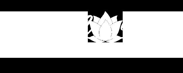 Natural Norte Logo