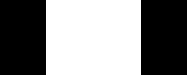 Rodcam Logo